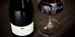 Alexana-winery-small